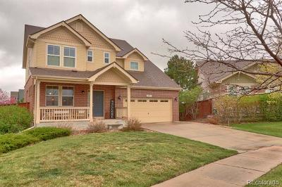 Aurora Single Family Home Active: 434 North Ider Street