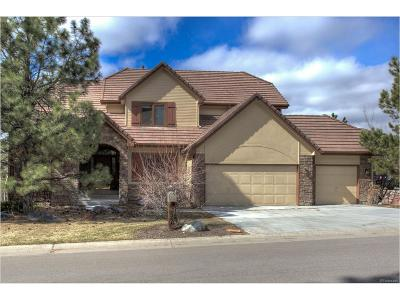 Castle Rock Single Family Home Under Contract: 834 Good Hope Drive