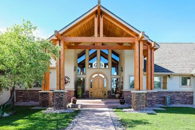 Castle Rock CO Single Family Home Active: $1,595,000