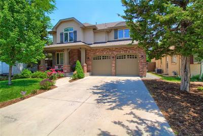 Denver Single Family Home Active: 154 South Grape Street