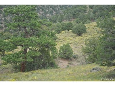 Crestone CO Residential Lots & Land Active: $30,000