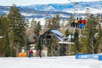Steamboat Springs CO Single Family Home Active: $4,100,000