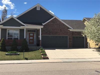 Longmont Single Family Home Active: 5217 Bella Vista Drive