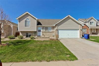 Firestone Single Family Home Active: 771 McClure Avenue