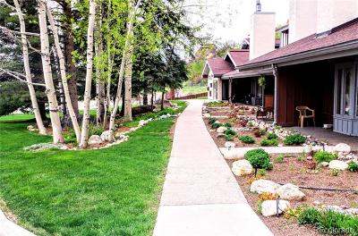 Steamboat Springs CO Condo/Townhouse Active: $299,500