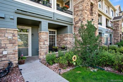 Castle Rock Condo/Townhouse Under Contract: 488 Black Feather Loop #207