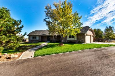 Single Family Home Active: 13809 East 133rd Drive