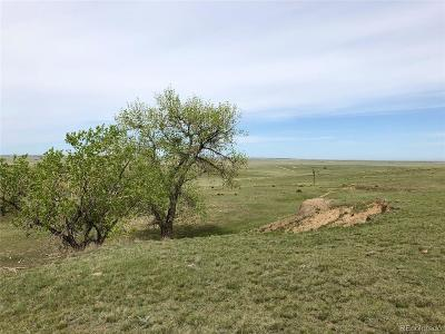 Elbert County Residential Lots & Land Active: County Road 162