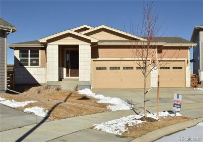 Firestone Single Family Home Active: 12679 Stone Creek Court