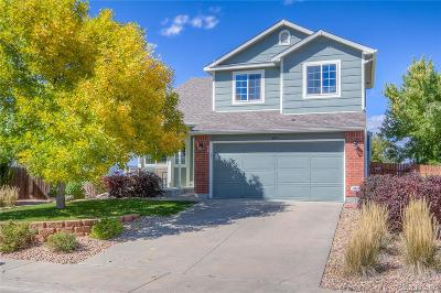 Castle Rock Single Family Home Active: 595 Branding Iron Lane