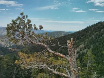 Evergreen Residential Lots & Land Active: 2500 Santa Fe Mountain Drive
