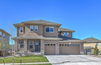 Arvada Single Family Home Under Contract: 16786 West 86th Lane