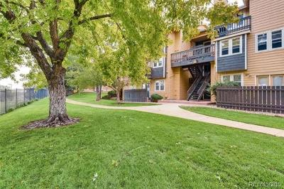 Arvada Single Family Home Active: 7897 Allison Way #201