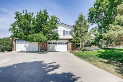 Castle Rock Single Family Home Under Contract: 9241 North Palomino Drive
