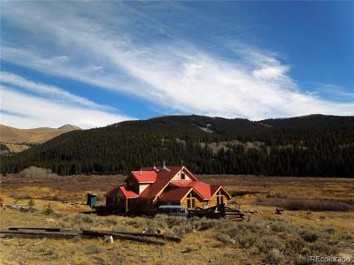 Leadville Single Family Home Active: 900 County Road 6b