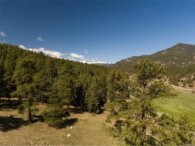 Evergreen Residential Lots & Land Active: 101 Fox Hollow Road