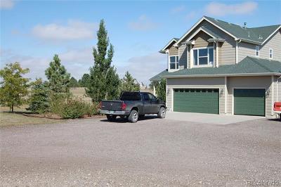 Elbert County Single Family Home Active: 6799 Arrowhead