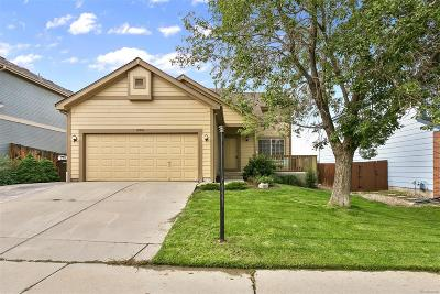 Broomfield Single Family Home Under Contract: 4341 Broemel Avenue