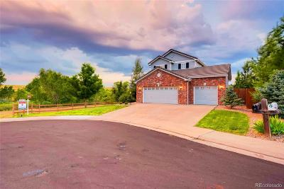 Meridian Single Family Home Under Contract: 10336 Nottingham Drive
