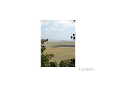 Hartsel Residential Lots & Land Active: 1001 Bridle Path