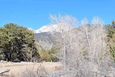 Crestone CO Residential Lots & Land Active: $21,700
