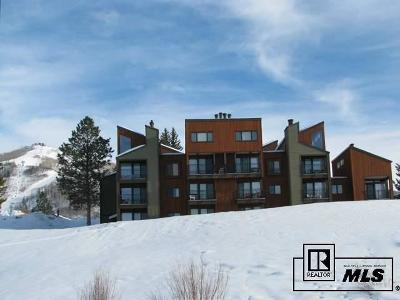 Condo/Townhouse Sold: 2160 Mount Werner Circle #UNIT 323