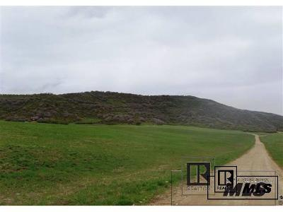Residential Lots & Land Active: 41575 Champagne Lane