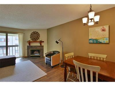 Condo/Townhouse Sold: 1525 Shadow Run #Unit A30