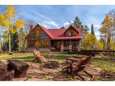 Routt County Single Family Home Active: 8925 Bearpaw Trail