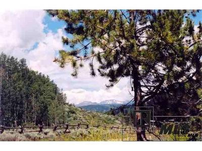 Clark Residential Lots & Land Active: 56275 Zirkel View Lane