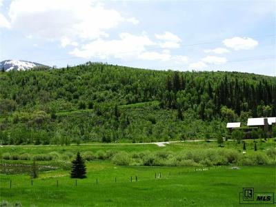 Residential Lots & Land Active: 2480 Elkins Lane