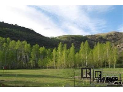 Residential Lots & Land Active: 2985 Littlefish Trail