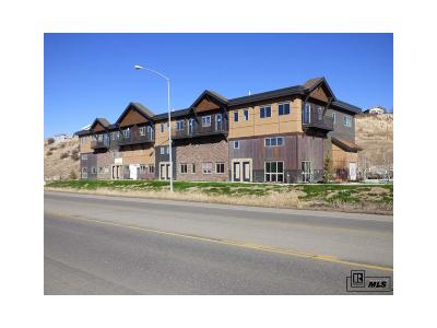 Steamboat Springs Commercial Active: 2710 Lincoln Avenue
