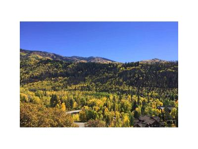Residential Lots & Land Active: 2815 Heavenly View