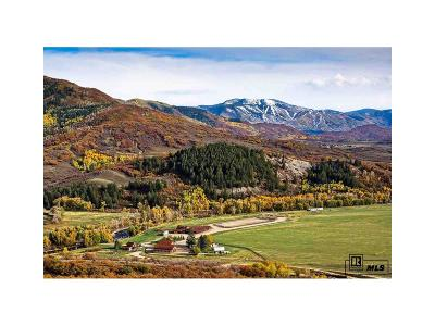 Steamboat Springs Single Family Home Active: 44285 Routt County Road #129