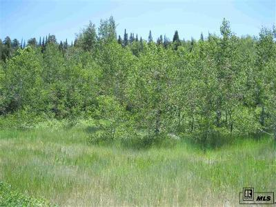 Steamboat Springs Residential Lots & Land Active: 1110 Overlook