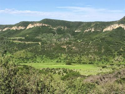 Steamboat Springs Residential Lots & Land Active: Rcr 68