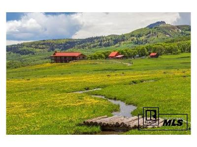 Routt County Single Family Home Active: 7195 County Road 82