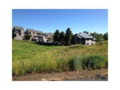 Steamboat Springs Residential Lots & Land Active: 3309 & 3311 Snowflake Circle
