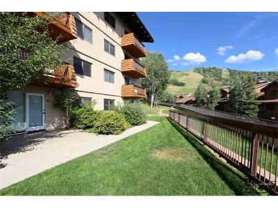 Condo/Townhouse Sold: 2215 Storm Meadows Drive #1-490 #Storm Me