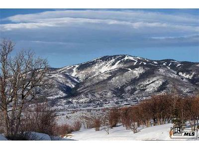 Residential Lots & Land Active: 30215 Marshall Ridge Road