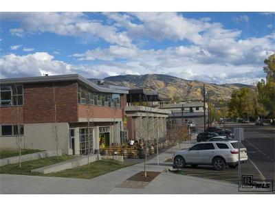 Commercial Active: 910 Yampa