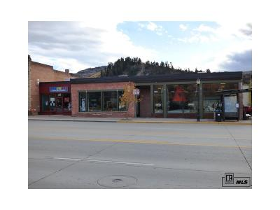 Steamboat Springs CO Commercial Active: $1,949,000