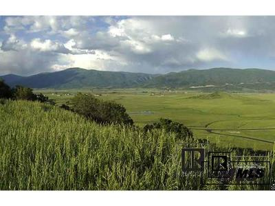 Residential Lots & Land Active: Lot 17 Sidney Peak Ranch