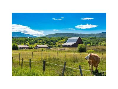 Steamboat Springs Single Family Home Active: 28925 County Road 14