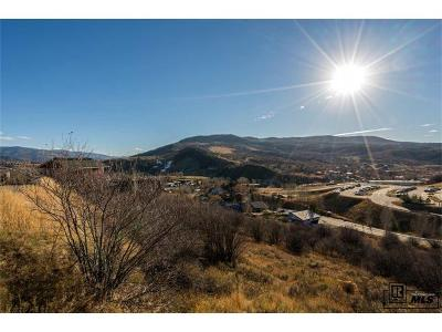 Residential Lots & Land Active: 1265 Buckskin Drive