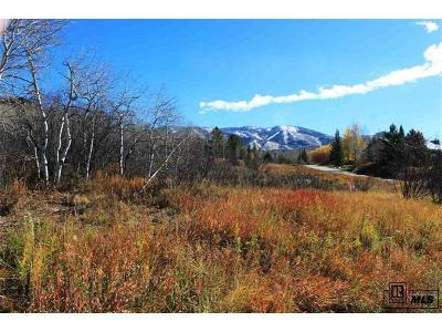 Residential Lots & Land Active: Fish Creek Falls Road
