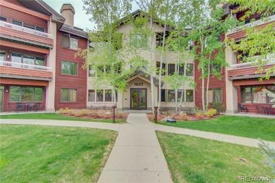 Steamboat Springs Condo/Townhouse Active: 1825 Medicine Springs Drive #3201
