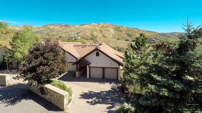 Steamboat Springs Condo/Townhouse Active: 1790 River Queen Lane #Unit B