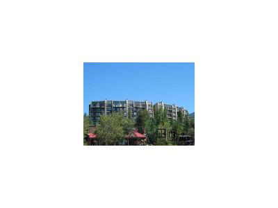 Steamboat Springs Condo/Townhouse Active: 1995 Storm Meadows Drive #207